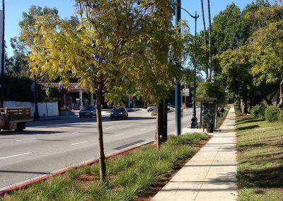 Bev hills-sidewalk pic