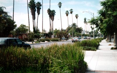 City of Riverside University Avenue Specific Plan and Streetscape Plan