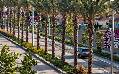 Rosemead Boulevard Safety Enhancements and Beautification