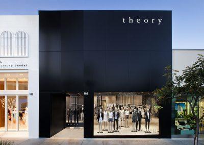 Theory*