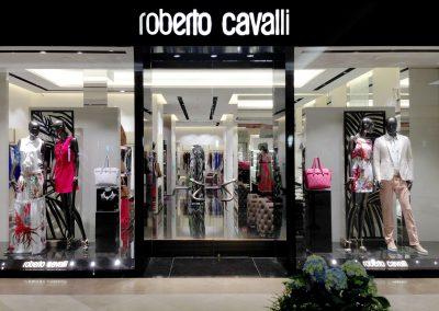CAVALLI-10